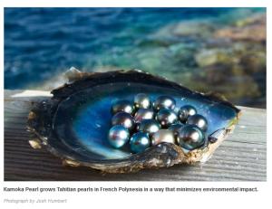 Kamoka Pearl Farm Tahitian Pearls